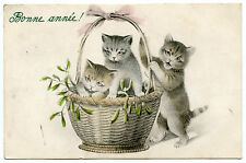 CHATS CATS KATZE PANIER BASKET