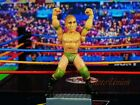 WWE MICRO AGGRESSION Wrestling Wrestler Figure Cake Topper Eric Young K1041 D