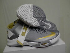 NIKE ZOOM LEBRON JAMES SOLDIER VI TB SIZE 11.5 grey,gold