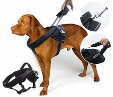 YOGADOG - Heavy Duty Dog Harness, Soft Padded with Special Extended Integrate...
