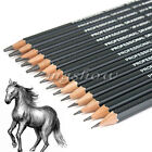 14 Graded Pencils Drawing Sketching Tones Shades Art Artist Picture Pencil Draw