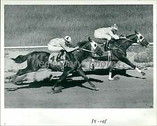 1987 Race Horses Neck-and-Neck on a Track Original News Service Photo