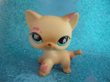 ORIGINAL Littlest Pet Shop  Short Hair Cat  #816 Shipping with Polish