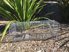 LARGE TRAP Humane live possum rabbit fox pigeon bird animal cage