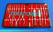 Set of 26 Pieces Dental Ortho Instruments Spatula Carvers Composite Kit
