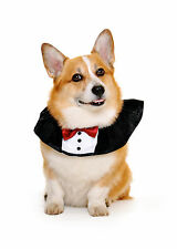 Dog tuxedo - bow tie, made in the USA, sizes XS-XL