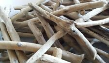 100 QUALITY PIECES OF DRIFTWOOD Beach Craft Rustic Projects Arts Art Drift Wood