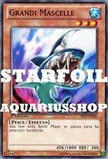 Yu-Gi-Oh! Grandi Mascelle STARFOIL SP13-IT006 Big Jaws Zexal Carta di Shark