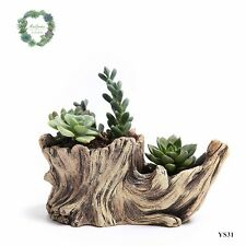 Imitated tree stump style succulent Pots Plant platter