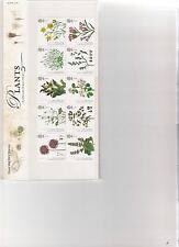 2009 ROYAL MAIL PRESENTATION PACK PLANTS UK SPECIES IN RECOVERY MINT DECIMAL STA