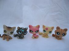Littlest Pet Shop Lot of 5 Cats Kittens # 1562 19 1231 815 649 Postcard Messiest
