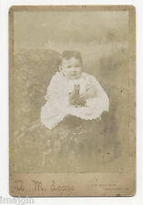 1890's BABY W/ CAT SQUEAK TOY CABINET PHOTO, LANCASTER, PA, KATIE MOWRER