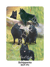 Ruth Maystead Dog Playing Cards Deck Pack Schipperke NEW