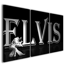 QUADRI MODERNI ELVIS PRESLEY LIVE STAMPE SU TELA ARREDAMENTO PICTURES CANVAS