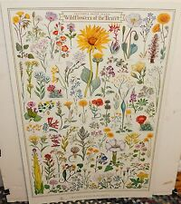 GOMPERS SAIJO WILDFLOWERS OF THE DESERT CALIFORNIA NATIVE PLANT SOCIETY POSTER