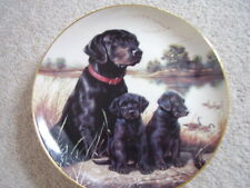 The Hamilton Collection England Porcelain Dog plate,First time out
