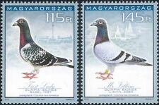 Hungary 2015 Racing Pigeons/Birds/Nature/Sports/Carrier/Pets 2v set (n45161)