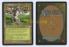 MTG MAGIC - Pendelhaven - Italiana Spirale Temporale Time Spiral TSP - 2006 MINT