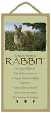 """5"""" X 10"""" ADVICE FROM A RABBIT WOOD PLAQUE Inspirational Sign Novelty Gift NEW"""