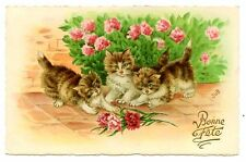 vintage cat postcard Jub cute cats kittens play w carnation flowers