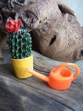 Kaktus und Gießkanne Blumenkanne Bodo Hennig Puppenstube