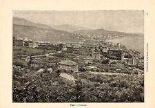 Stampa antica GENOVA PEGLI veduta panoramica 1891 Old print