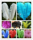 10pcs High Quality Natural Ostrich Feathers Party Decoration