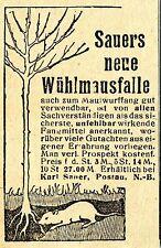 Karl Sauer Postau SAUERS NEUE WÜHLMAUSFALLE Historische Reklame von 1921