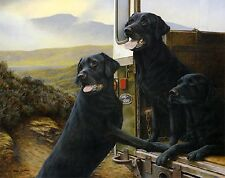 WILD ROVERS Creative Black Labrador Dogs  print Father's Day gift present #4