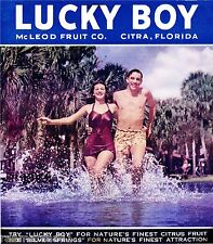Citra Silver Springs Florida Lucky Boy Orange Citrus Fruit Crate Label Art Print