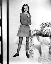 "Hayley Mills 10"" x 8"" Photograph no 9"
