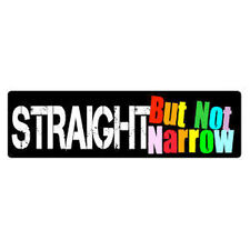 Straight But Not Narrow - 3x10 LGBT Ally Gay & Lesbian Support Sticker Decal