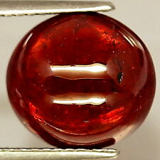 TOP SPESSARTINE : 7,13 Ct Natürlicher Orange Rot Spessartin / Spessartit Granat