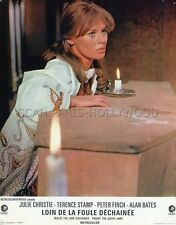 JULIE CHRISTIE FAR FROM THE MADDING CROWD 1967 VINTAGE LOBBY CARD #5