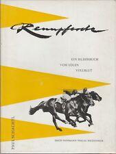 RENNPFERDE  (chevaux de course) - 47 photographies