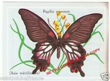 PAPILLON INSECTE BUTTERFLY PAPILIO MEMNON LEPIDOPTERE Papilionidae ANNEE 60s