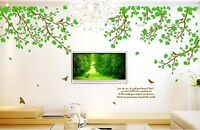Removable Large Tree Bird Leaves Quote Wall Sticker Vinyl Art Decal room Decor