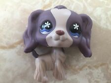 Littlest Pet Shop RARE Cocker Spaniel Dog Puppy #672 Purple Flower LPS