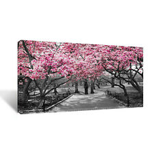 Cherry Flower Blossom On Trees, Red,White,Pink On Nature CANVAS Picture 20x40""