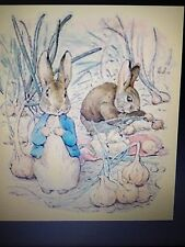PETER RABBIT (2) cross stitch kit