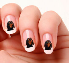 20 Nail Art Stickers Transfers Decals 869 Dog cavalier king charles black & tan