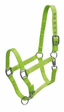 LIME GREEN Triple Ply Nylon Horse Size Turnout Halter! NEW HORSE TACK!!!