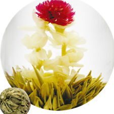 Multi Styles Beautiful Handmade Blooming Flower Green Tea Ball Herbal Tea EC