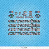 Cannondale R13000 Bicycle Decals - Transfers - Stickers - Silver - Set 0721