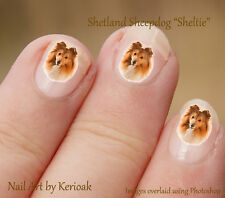 Shetland Sheepdog, Sheltie, Set of 24 Dog Nail Art Stickers Decals by Kerioak