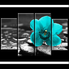 Black White Teal Orchid Floral Canvas Wall Art Picture XL Print Flower Gift xmas