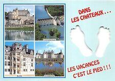 B53088 Chateux de la Loire multi vues   france
