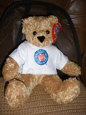 """Vermont 14"""" Teddy Bear Friends for Life and Little Hero Plush Stuffed Animal"""