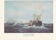 "1974 Vintage Currier & Ives WHALING ""SPERM WHALE IN A FLURRY"" COLOR Lithograph"