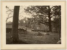 LANDSCAPE COUNTRY FIELD STONE WALL AND GATE VINTAGE PHOTO